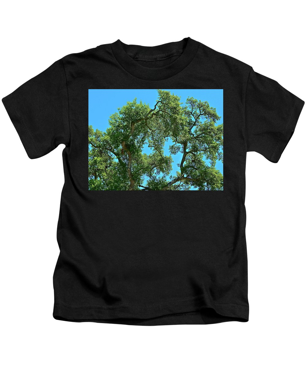 Tree Kids T-Shirt featuring the photograph Beautiful Oak by Diana Hatcher