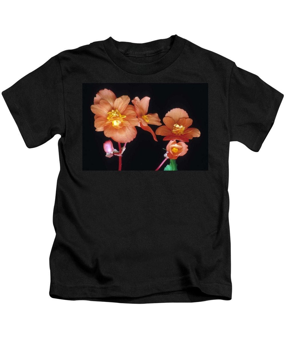 Begonia Kids T-Shirt featuring the photograph Begonia Buddies by Laurie Paci