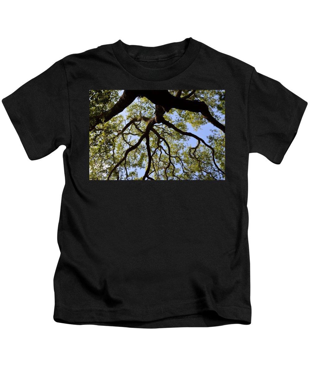 Oak Kids T-Shirt featuring the photograph Beneath The Oak by Linda Covino