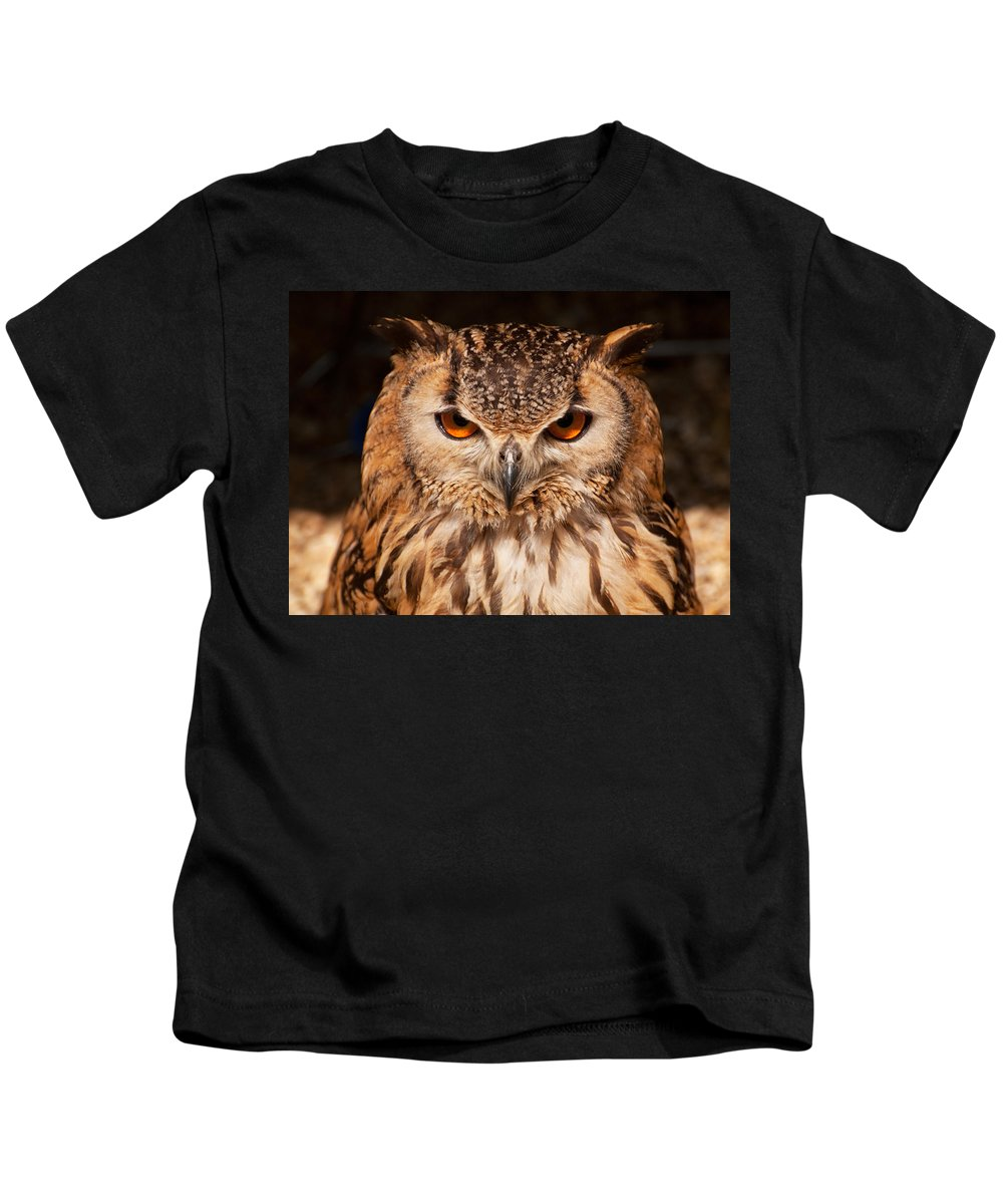 Owl Kids T-Shirt featuring the photograph Bengal Owl by Chris Thaxter