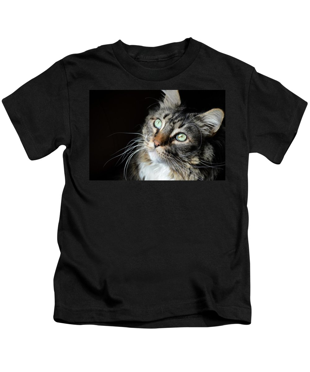 Cat Kids T-Shirt featuring the photograph Big Cat In The Sun by Jeffrey Ehninger