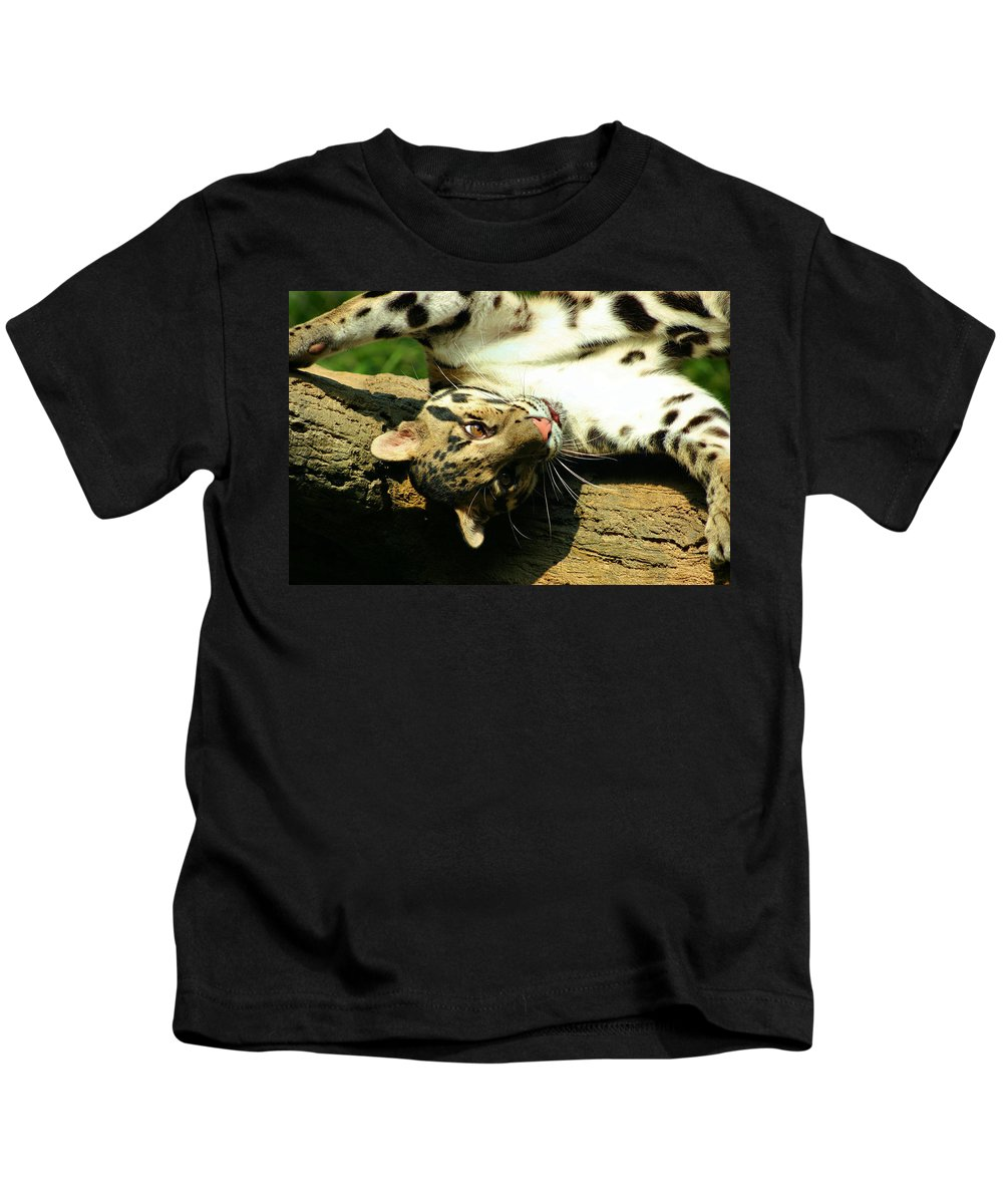 Clouded Leopard Kids T-Shirt featuring the photograph Big Kitty Fun by Kristin Elmquist