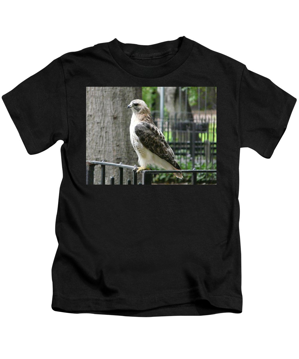 Bird Of Prey Kids T-Shirt featuring the photograph Bird Of Prey by Valerie Ornstein