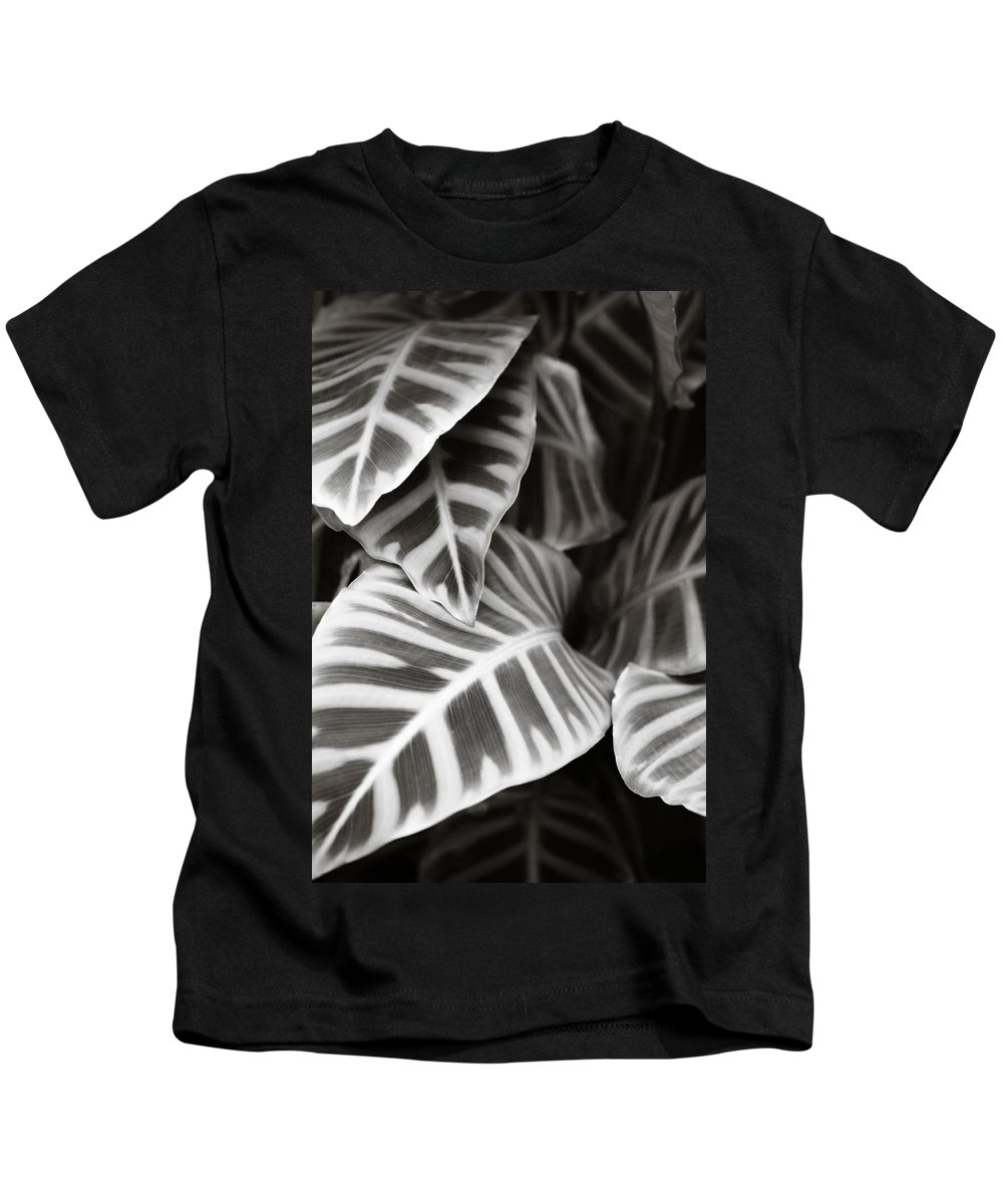 Black Kids T-Shirt featuring the photograph Black And White Leaves by Marilyn Hunt