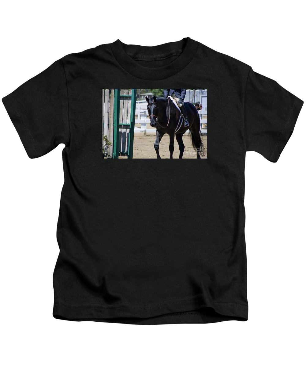Horses Kids T-Shirt featuring the photograph Black Morgan Horse Hunter Jumper by Waterdancer