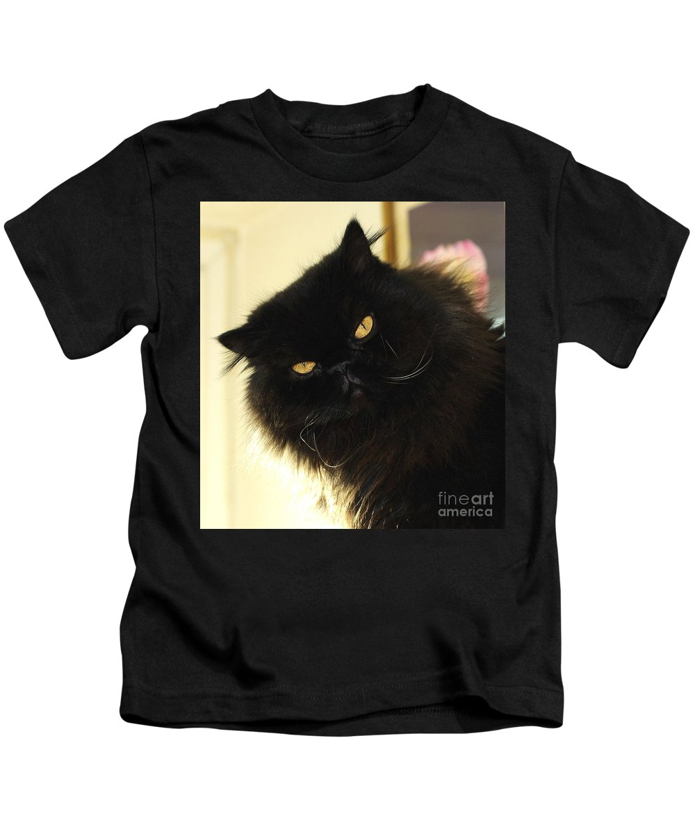 Cat Kids T-Shirt featuring the photograph Black Persian Cat by John Chatterley