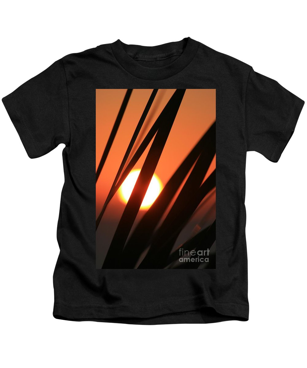 Sun Kids T-Shirt featuring the photograph Blazing Sunset And Grasses by Nadine Rippelmeyer