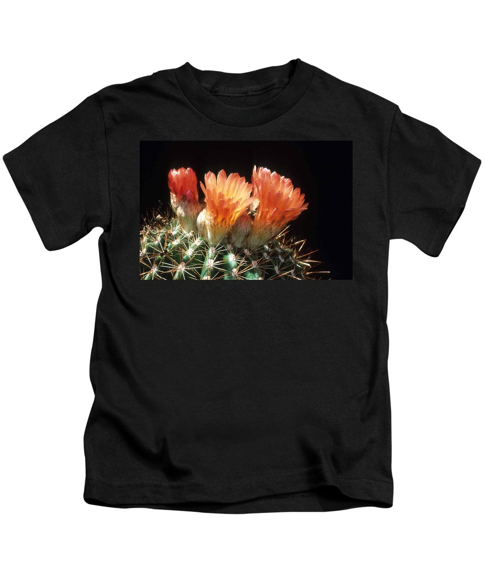 Barrel Cactus Kids T-Shirt featuring the photograph Bloomin' Barrel by Laurie Paci