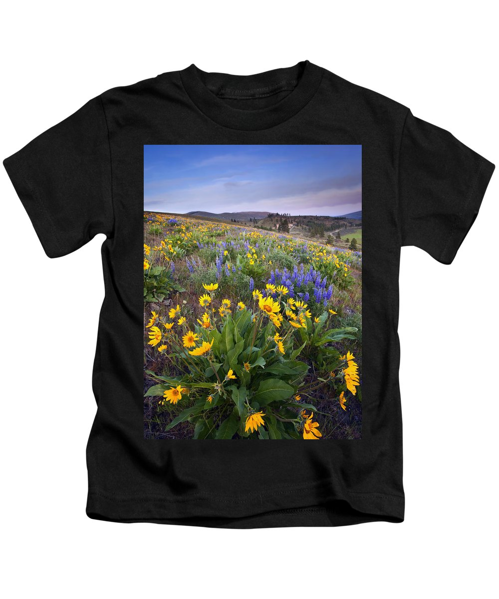 Lupine Kids T-Shirt featuring the photograph Blue And Gold by Mike Dawson