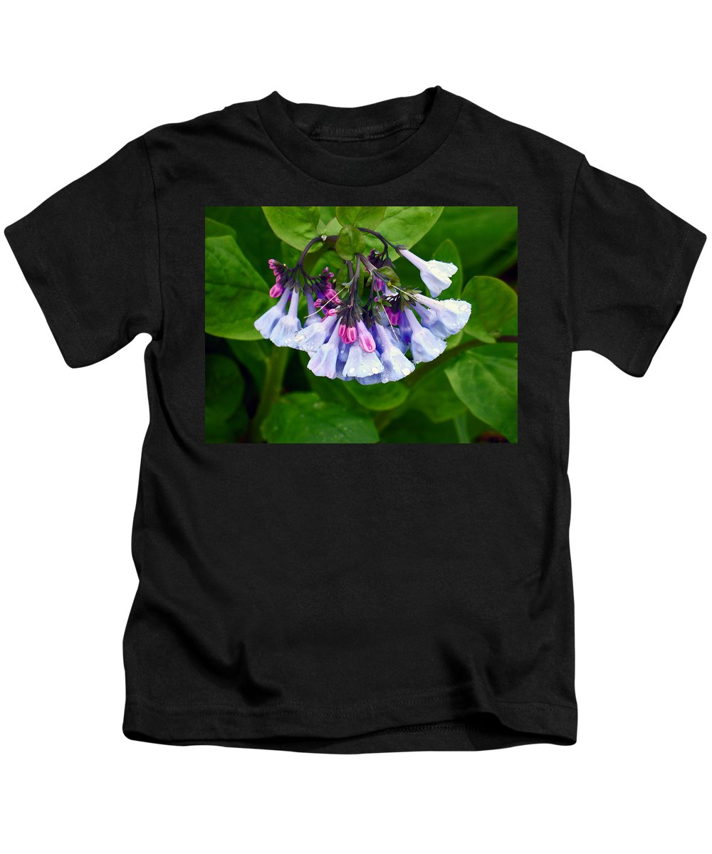 Native Landscape Kids T-Shirt featuring the photograph Blue Bells by Steve Karol