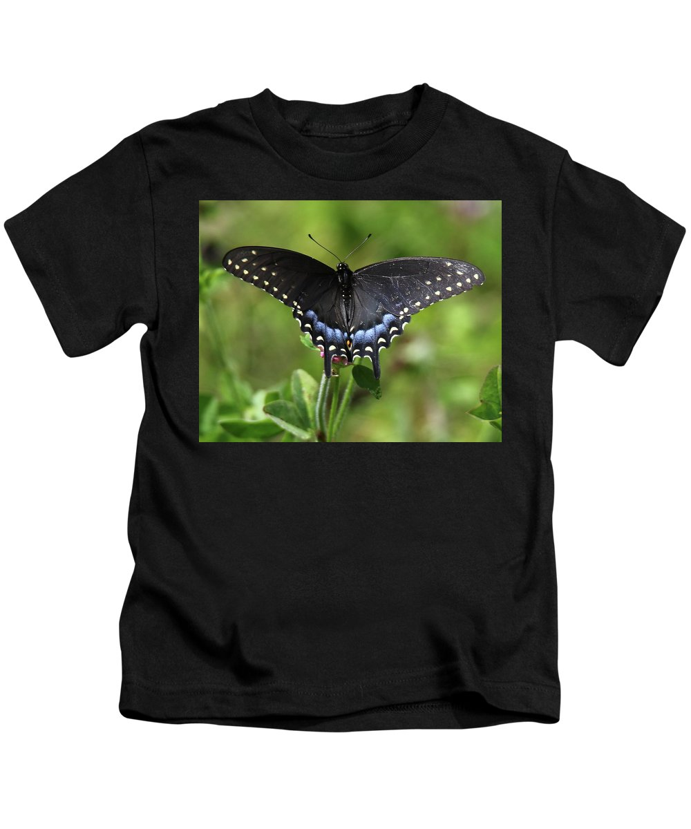 Insect Kids T-Shirt featuring the photograph Blue Tailed Black Butterfly by Arvin Miner