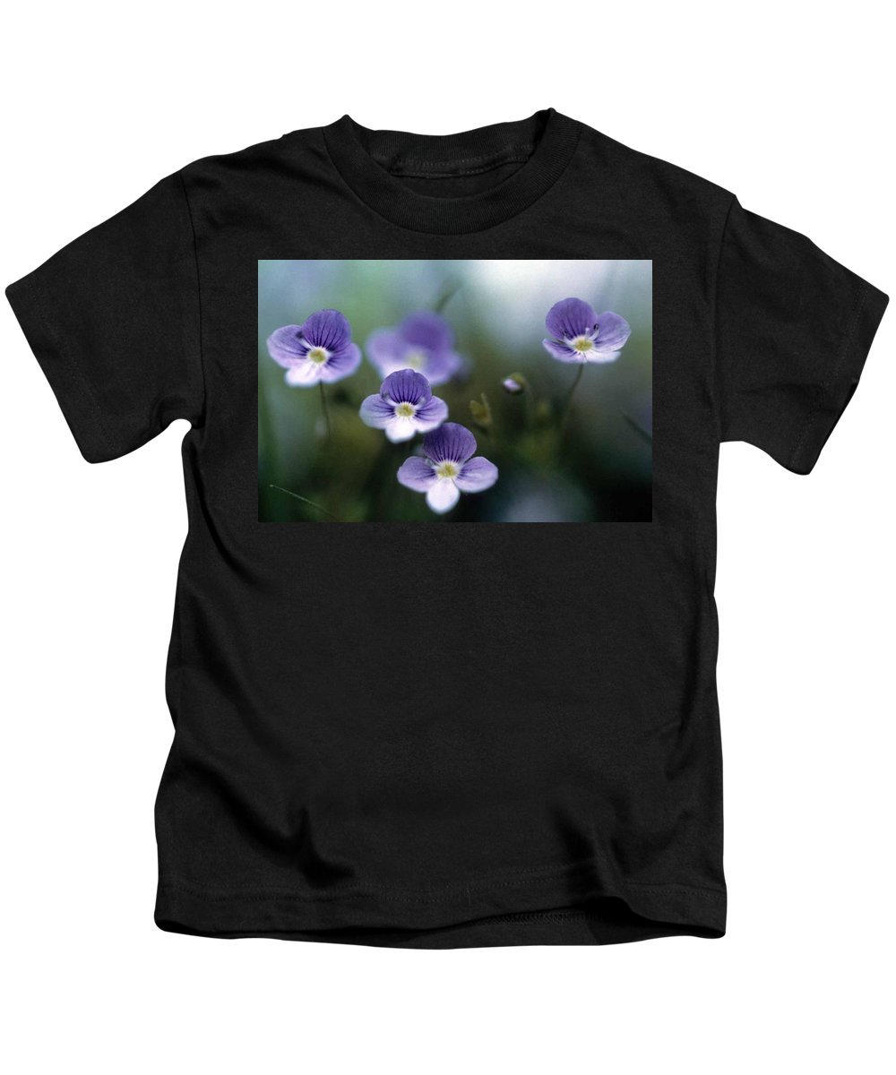 Bluettes Kids T-Shirt featuring the photograph Bluettes by Laurie Paci
