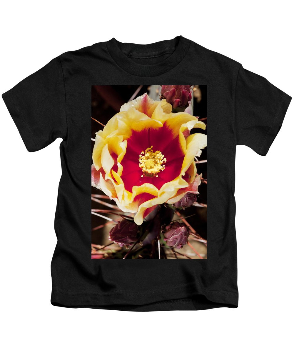 Prickly Pear Kids T-Shirt featuring the photograph Bold And Beautiful by Kelley King
