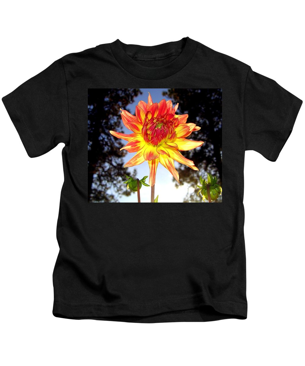 Dahlia Kids T-Shirt featuring the photograph Bold And Beautiful by Will Borden