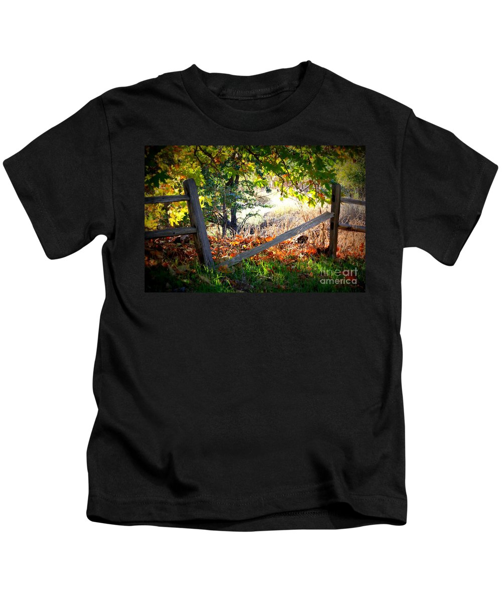 Autumn Kids T-Shirt featuring the photograph Broken Fence In Sycamore Park by Carol Groenen