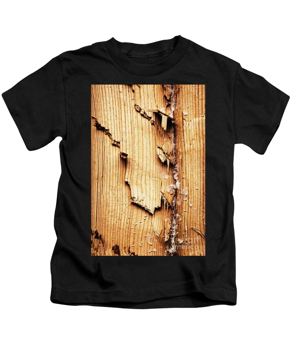 Wood Kids T-Shirt featuring the photograph Broken Old Stump Spruce by Jozef Jankola