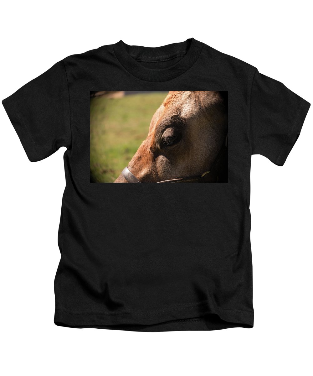 Cow Kids T-Shirt featuring the photograph Brown Cow With Vignette by Diane Schuler