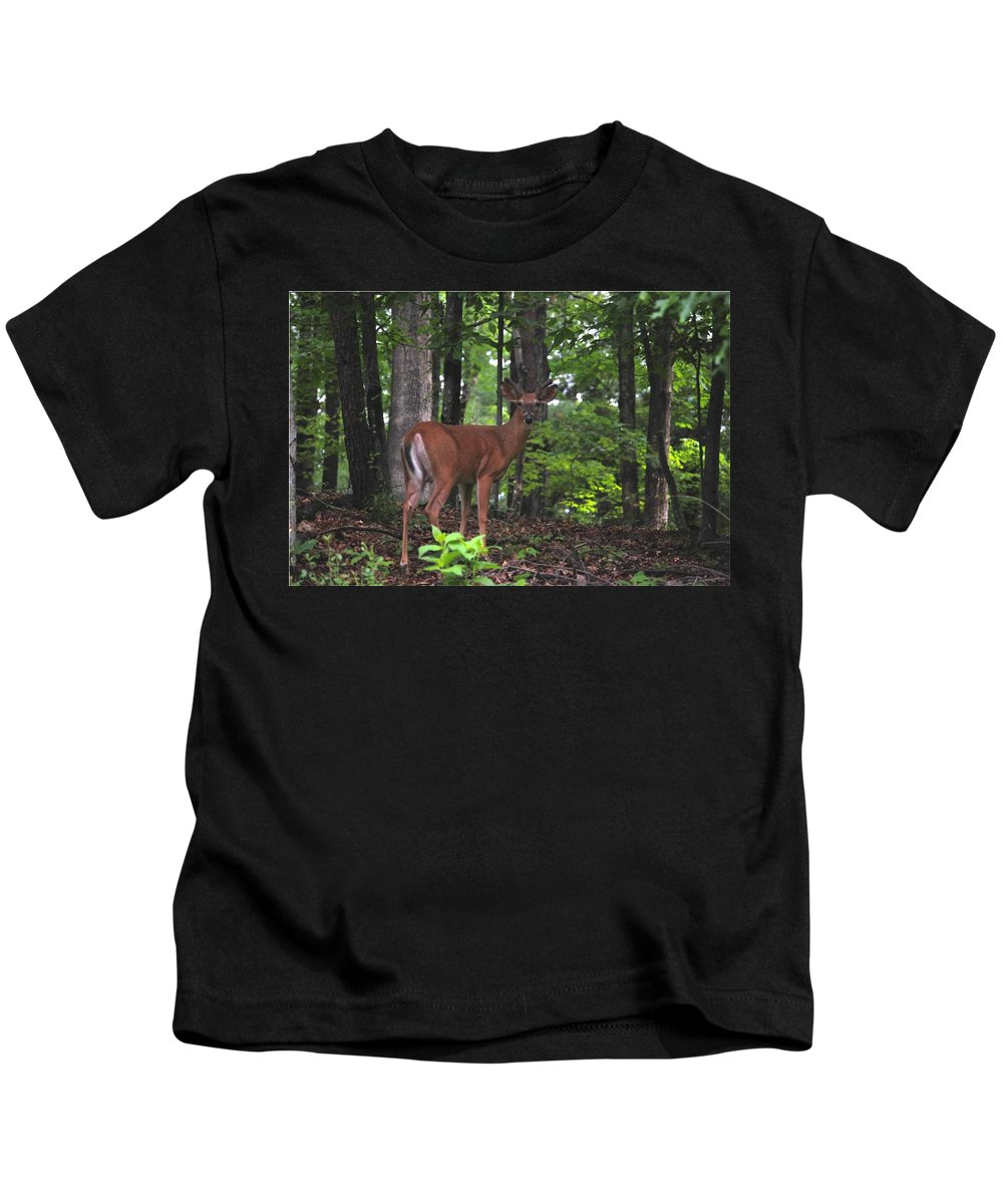 Wildlife Kids T-Shirt featuring the photograph Buck In Velvet by Eric Liller