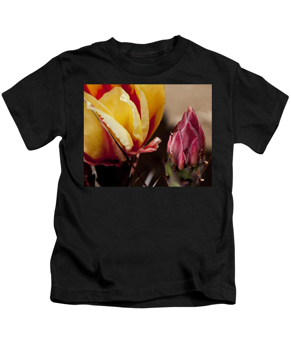 Cactus Kids T-Shirt featuring the photograph Bud To Blossom by Kelley King