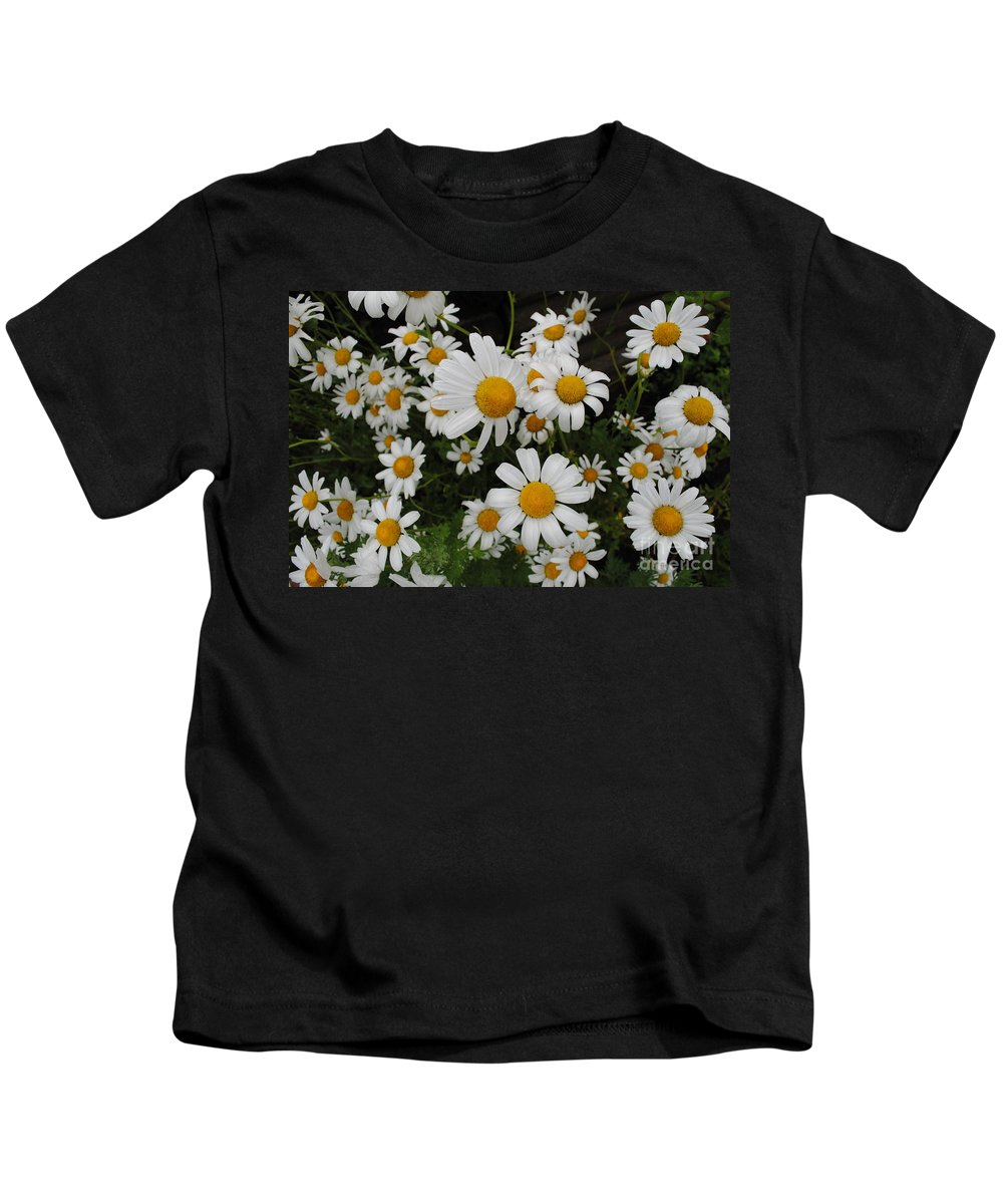 Daisy Kids T-Shirt featuring the photograph Bunch Of Daisy by Jost Houk