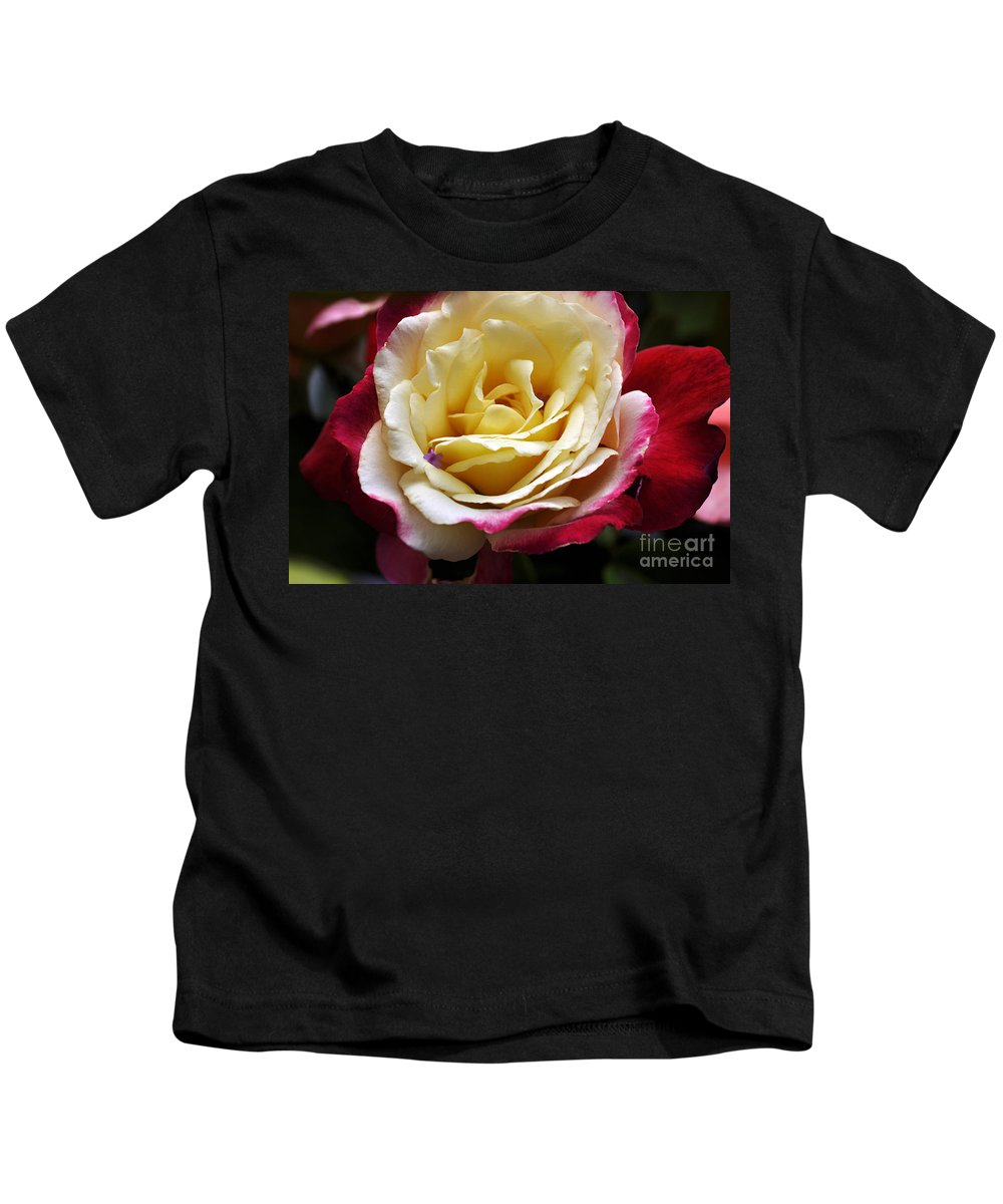 Clay Kids T-Shirt featuring the photograph Burst Of Rose by Clayton Bruster
