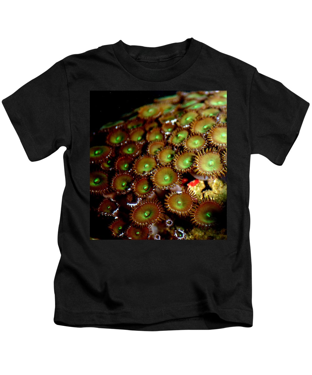 Underwater Kids T-Shirt featuring the photograph Button Polyps by Anthony Jones