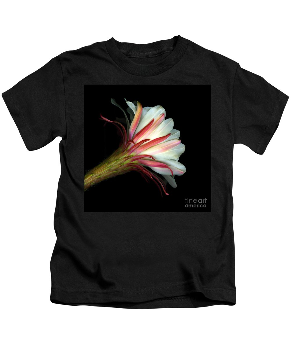 Scanart Kids T-Shirt featuring the photograph Cactus Flower by Christian Slanec
