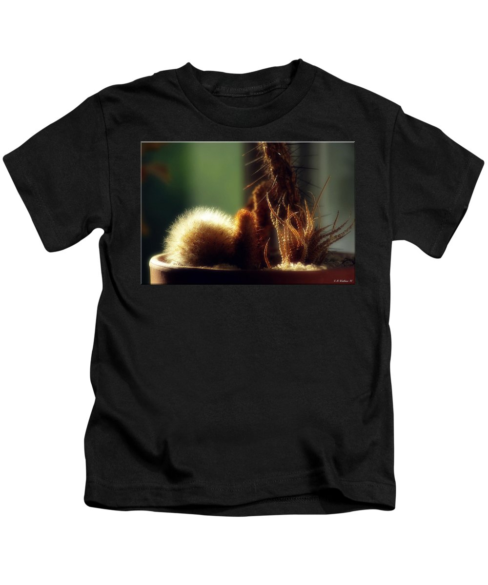 2d Kids T-Shirt featuring the photograph Cactus Light by Brian Wallace
