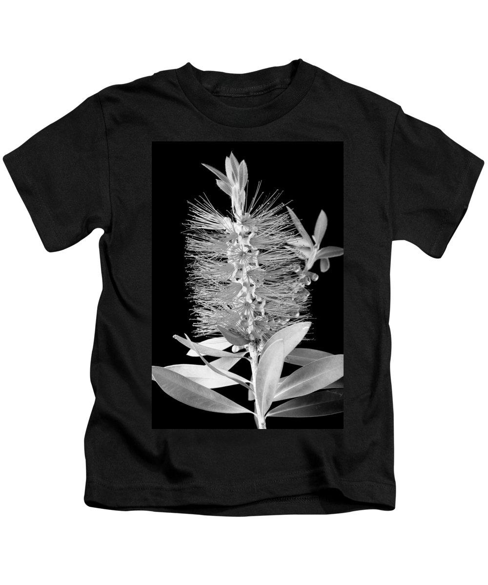 Bottlebrush Kids T-Shirt featuring the photograph Callistemon Beauty 5 by Kelley King