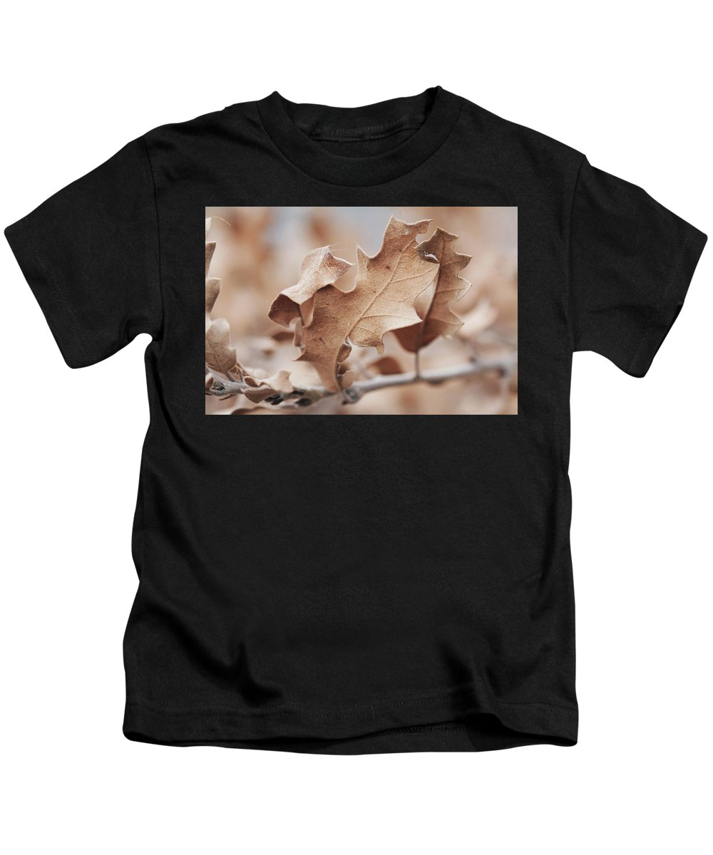Sky Is The Limit Images Kids T-Shirt featuring the photograph Calm Altitude by Becca Buecher