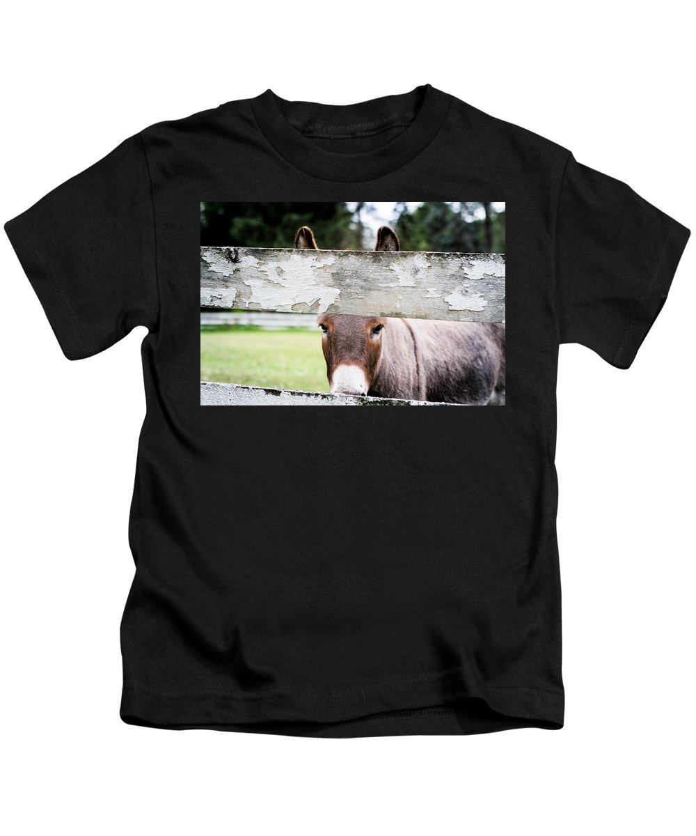 Animals Kids T-Shirt featuring the photograph Can I Burro Your Camera? by Alan Ignatowski