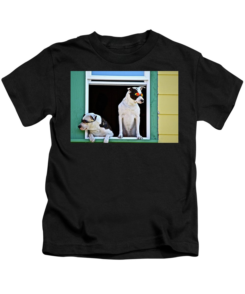 Animals Kids T-Shirt featuring the photograph Canine Comedians by Diana Hatcher