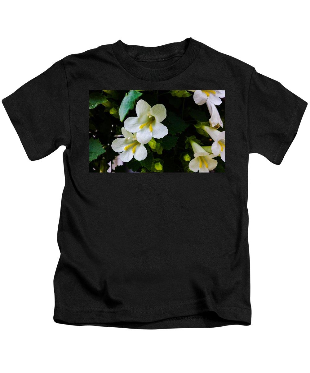 White Kids T-Shirt featuring the photograph Cascade Of White by Jennifer Kohler
