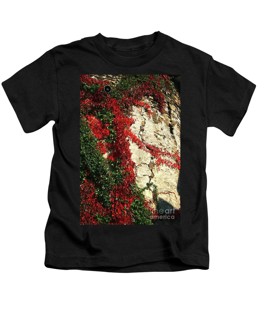 Color Vines O Kids T-Shirt featuring the photograph Castle Vines by Timothy Sanford