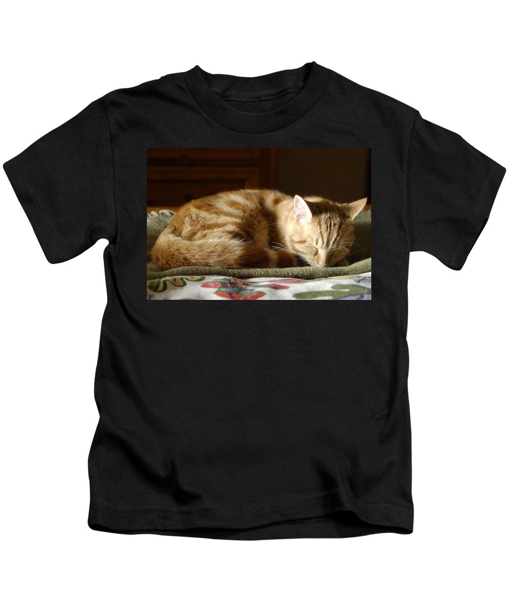 Cat Kids T-Shirt featuring the photograph Cat Nap by David Lee Thompson