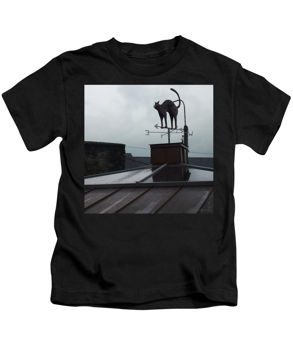 Cat Kids T-Shirt featuring the photograph Cat On A Cool Tin Roof by Tim Nyberg
