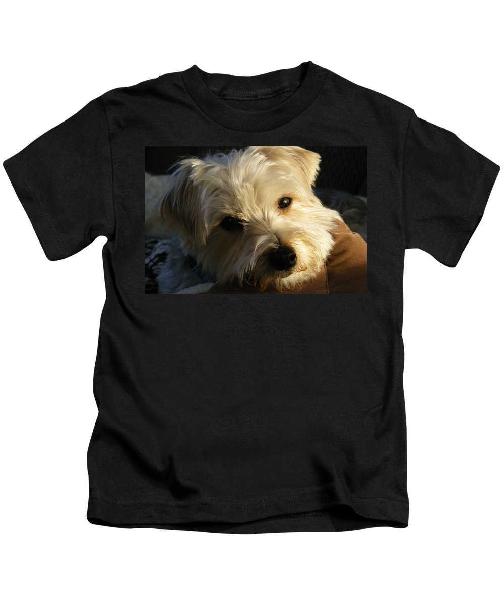 Dog Kids T-Shirt featuring the photograph Charlie by Ed Smith