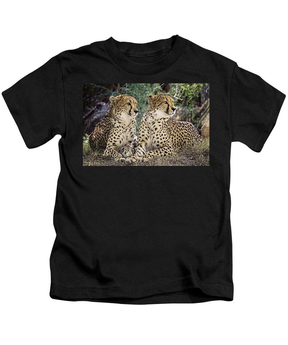 Cheetah Kids T-Shirt featuring the photograph Cheetah Pair by Dawn Van Doorn