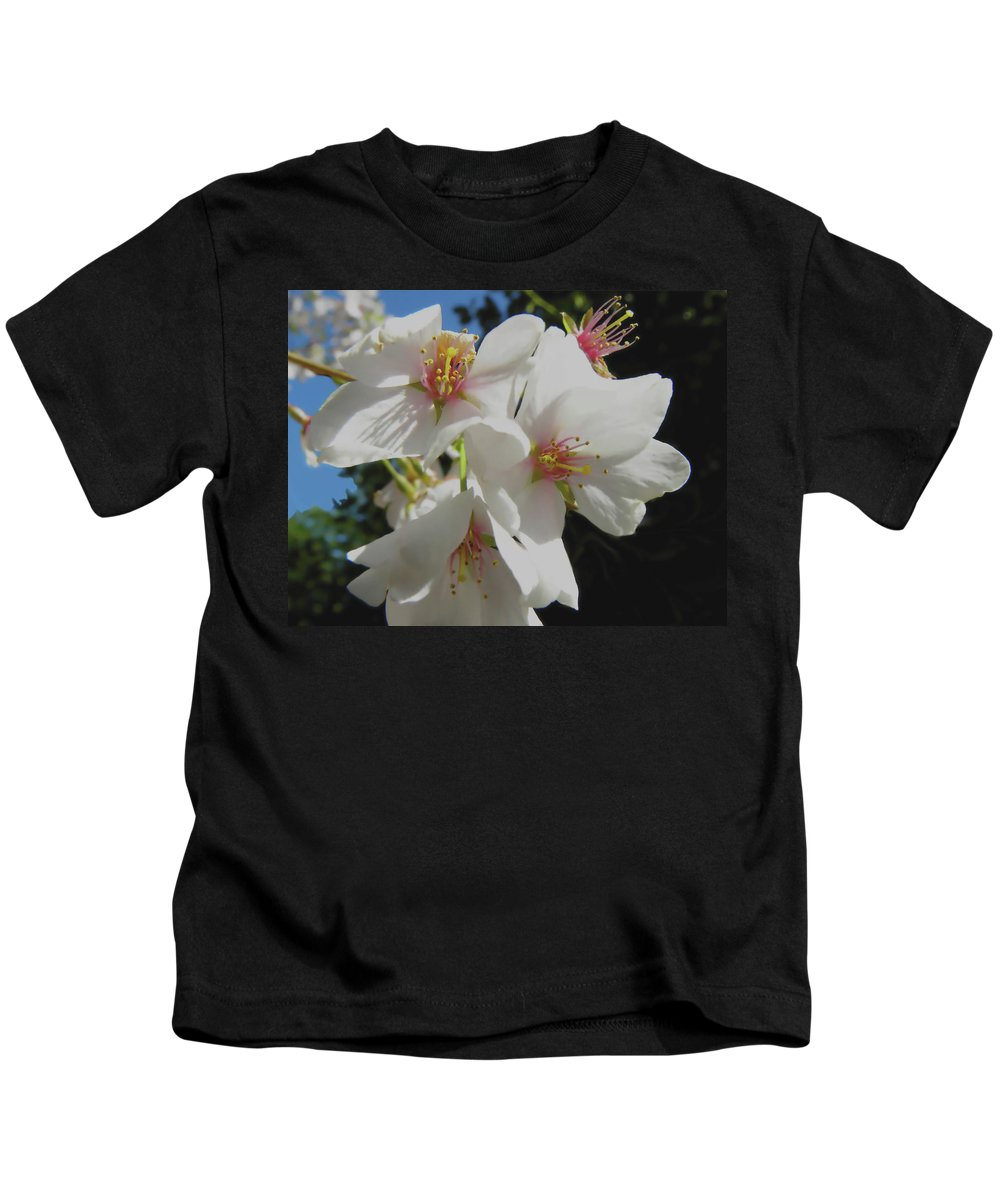 Cherry Blossoms Kids T-Shirt featuring the photograph Cherry Blossoms by Sandi OReilly