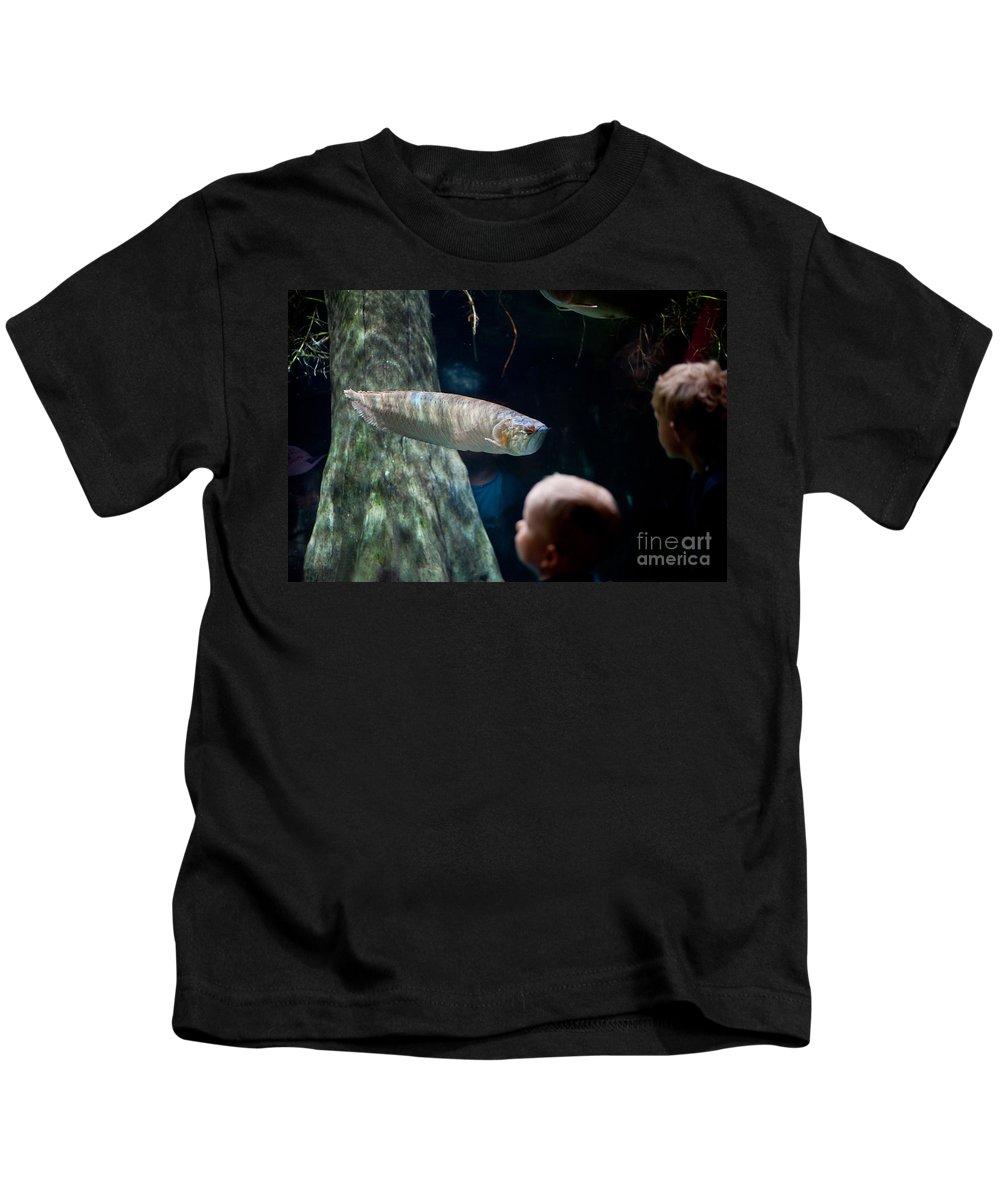 Silver Arowana Kids T-Shirt featuring the photograph Children Watch Silver Arowana Fish by Arletta Cwalina