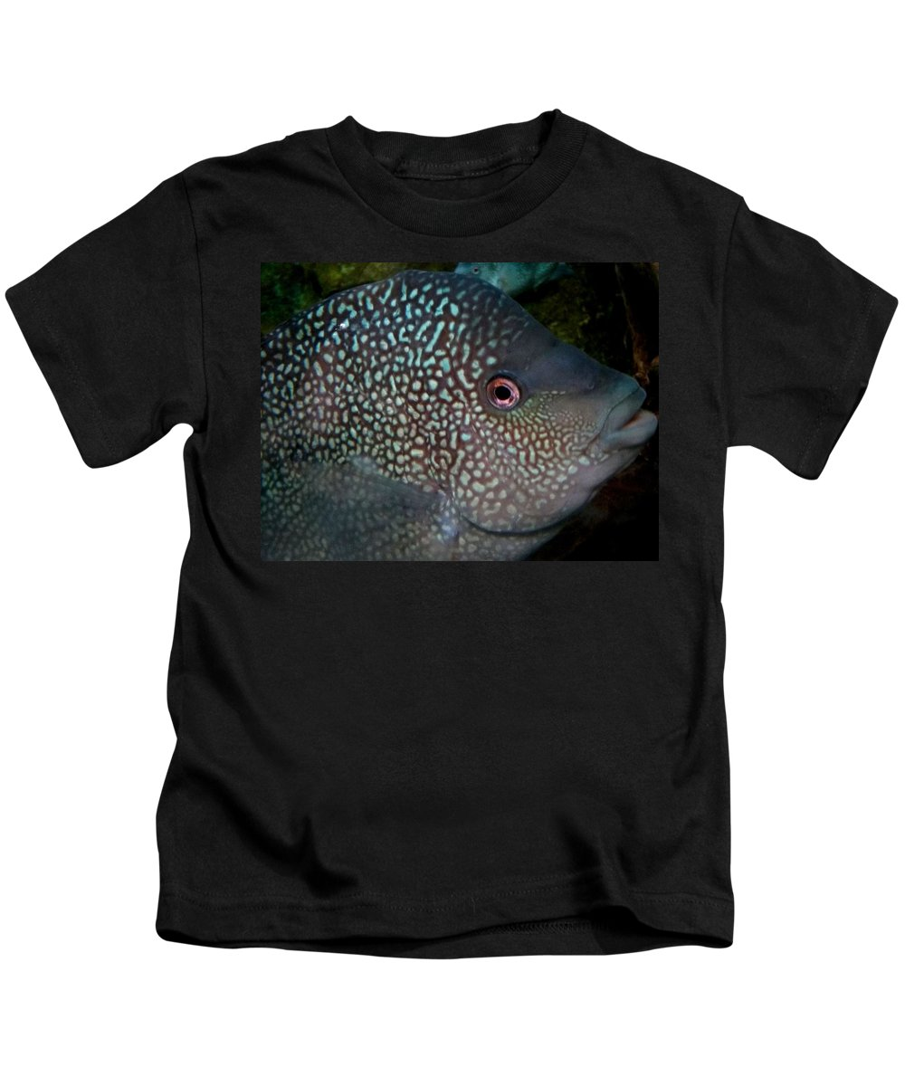 Fish Kids T-Shirt featuring the photograph Close Up by Sarah Houser