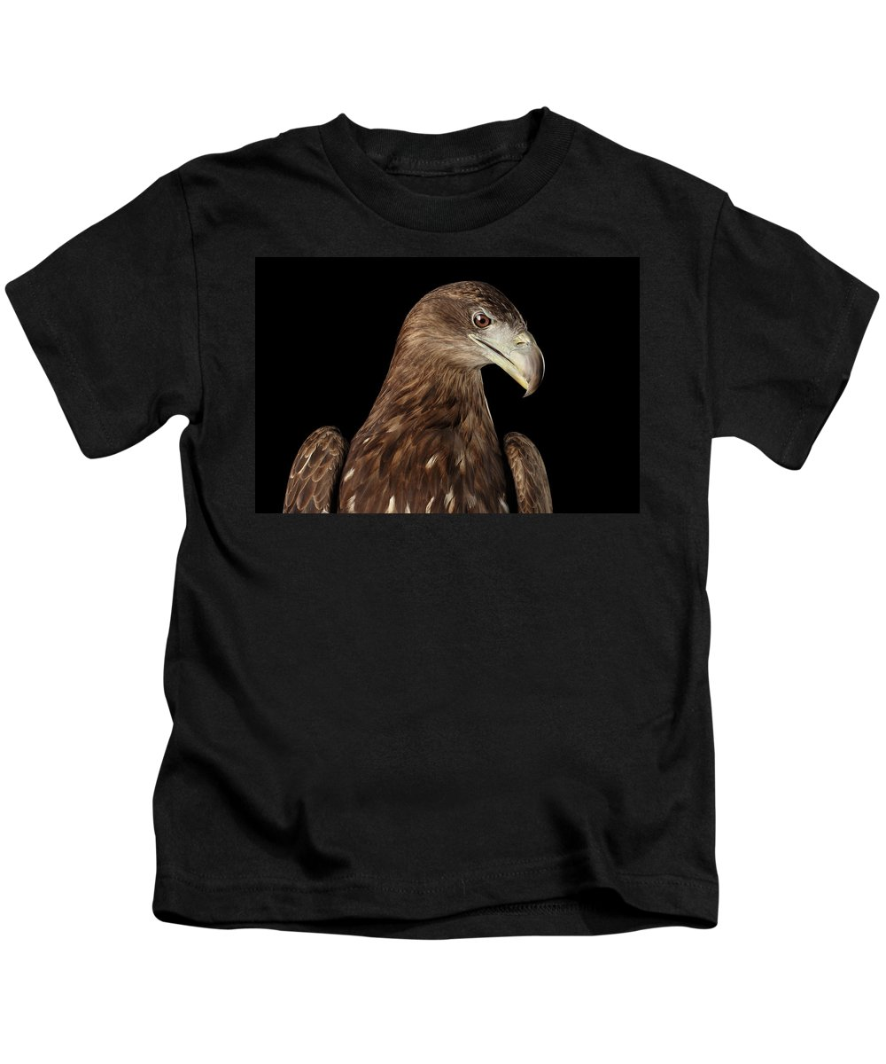 Eagle Kids T-Shirt featuring the photograph Close-up White-tailed Eagle, Birds Of Prey Isolated On Black Bac by Sergey Taran