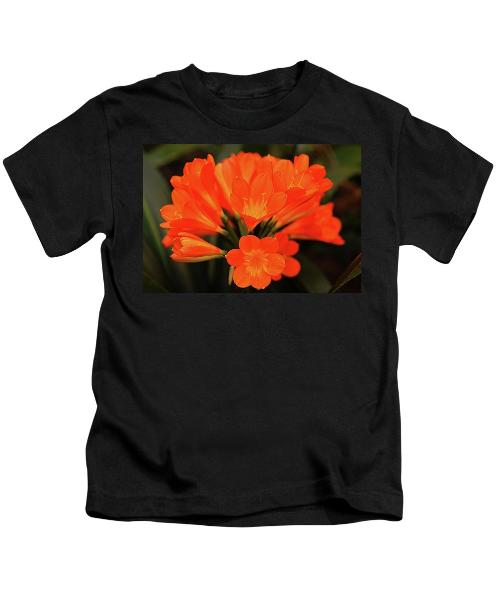 Orange Flower Kids T-Shirt featuring the photograph Clyvia by Carolyn Parker