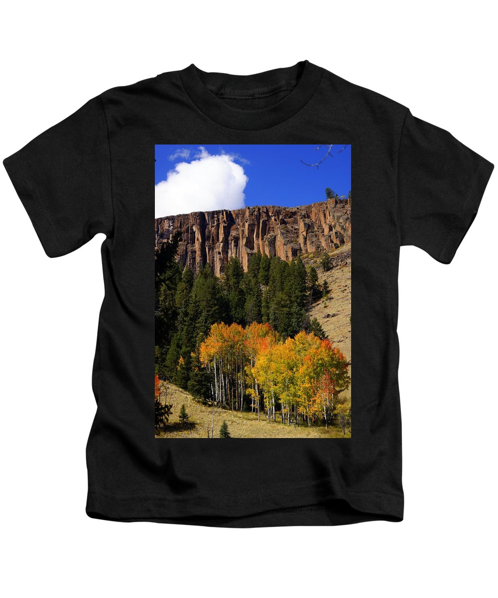 Fall Colors Kids T-Shirt featuring the photograph Colorful Canyon by Marty Koch