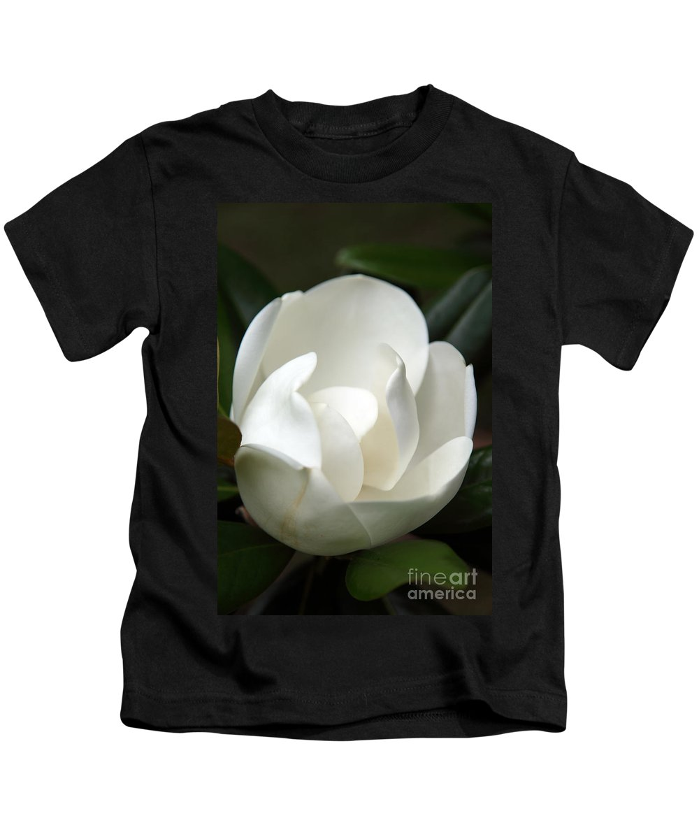 Magnolia Kids T-Shirt featuring the photograph Container by Amanda Barcon