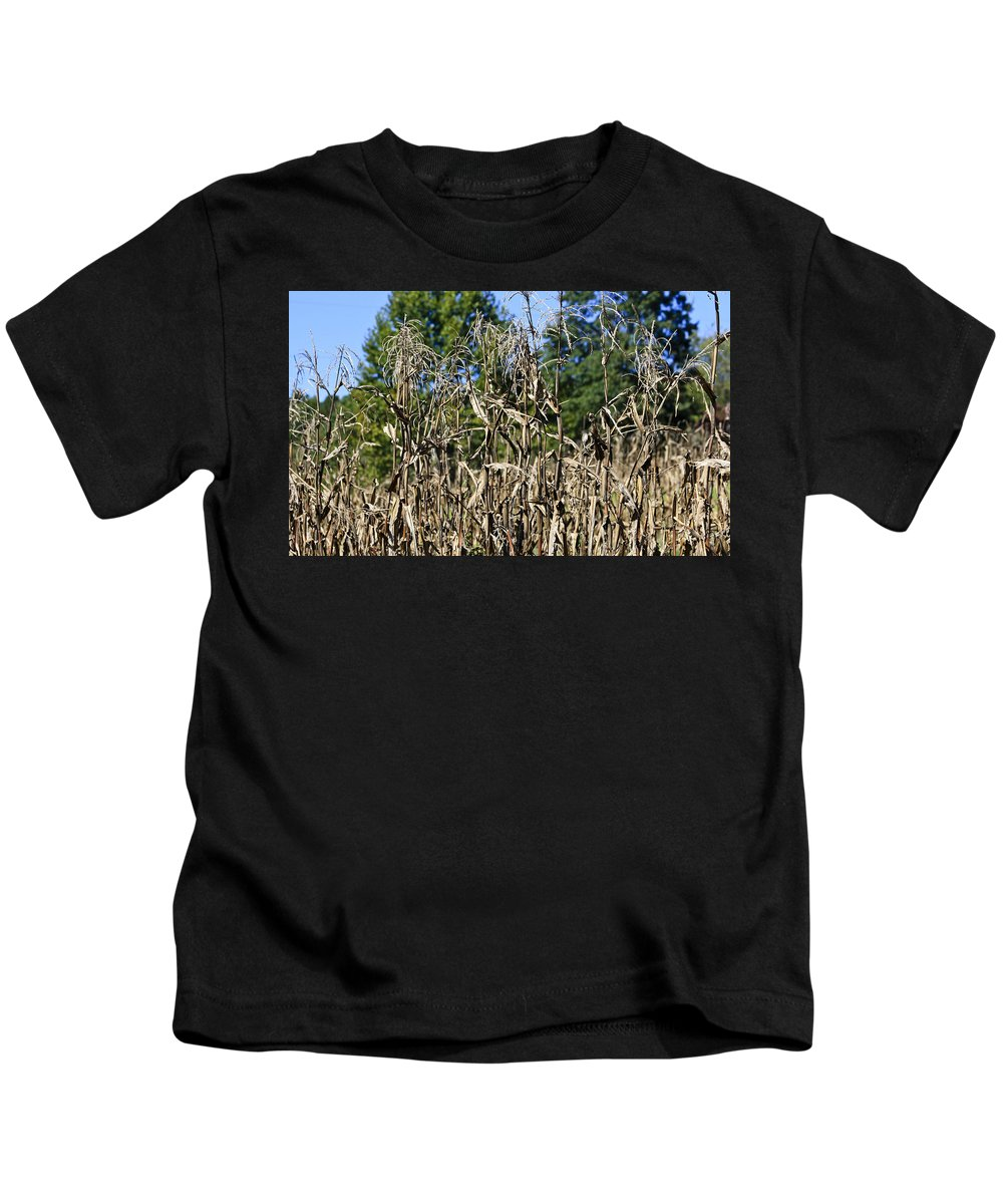 Corn Kids T-Shirt featuring the photograph Corn Stalks Drying by Teresa Mucha