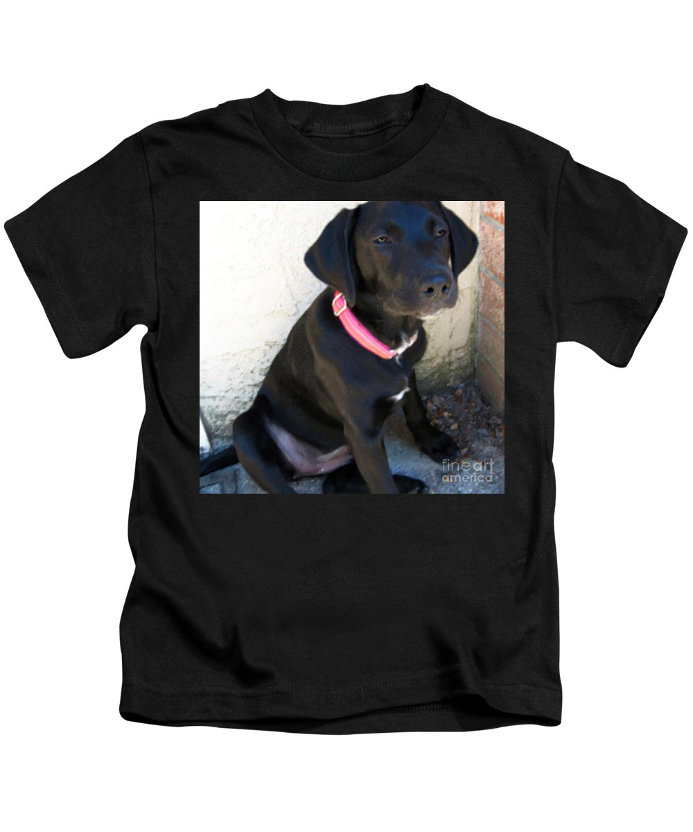Dog Kids T-Shirt featuring the photograph Cornered by Rhonda Chase
