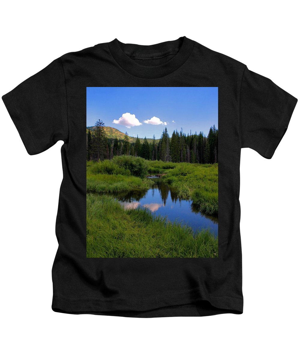 Lake Kids T-Shirt featuring the photograph Cottonwood by Kristin Elmquist