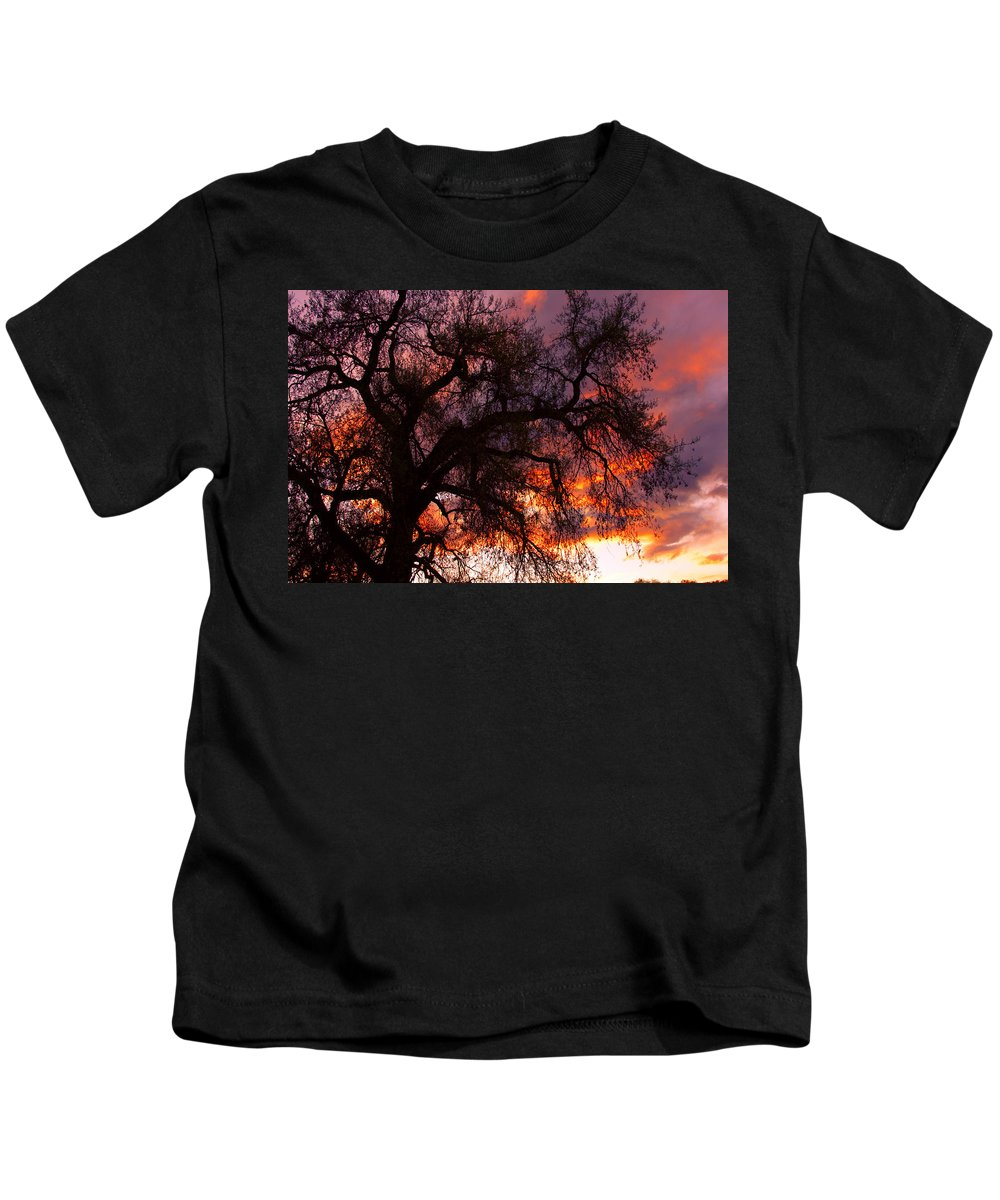 Silhouette Kids T-Shirt featuring the photograph Cottonwood Sunset Silhouette by James BO Insogna