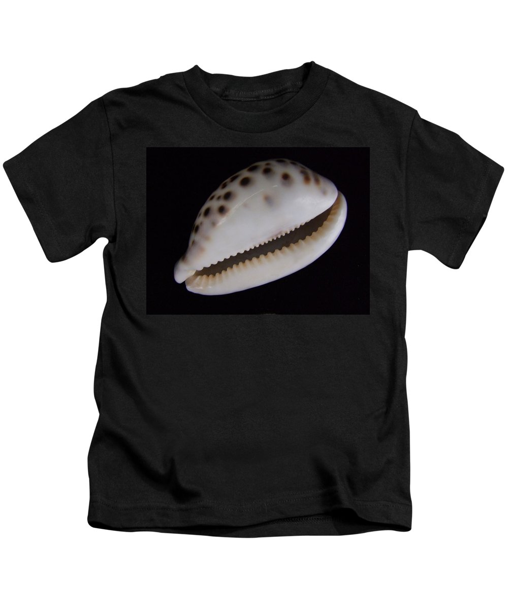 Mary Deal Kids T-Shirt featuring the photograph Cowry Shell by Mary Deal
